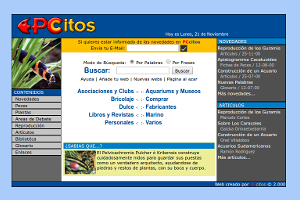 PCcitos.com en el año 2001